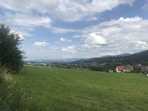 Traumhafte Aussichten auf Freiburg und den Schwarzwald