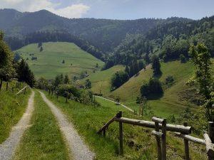 Ein schöner Rundweg vom Besucherbergwerk zum Glocknerhof
